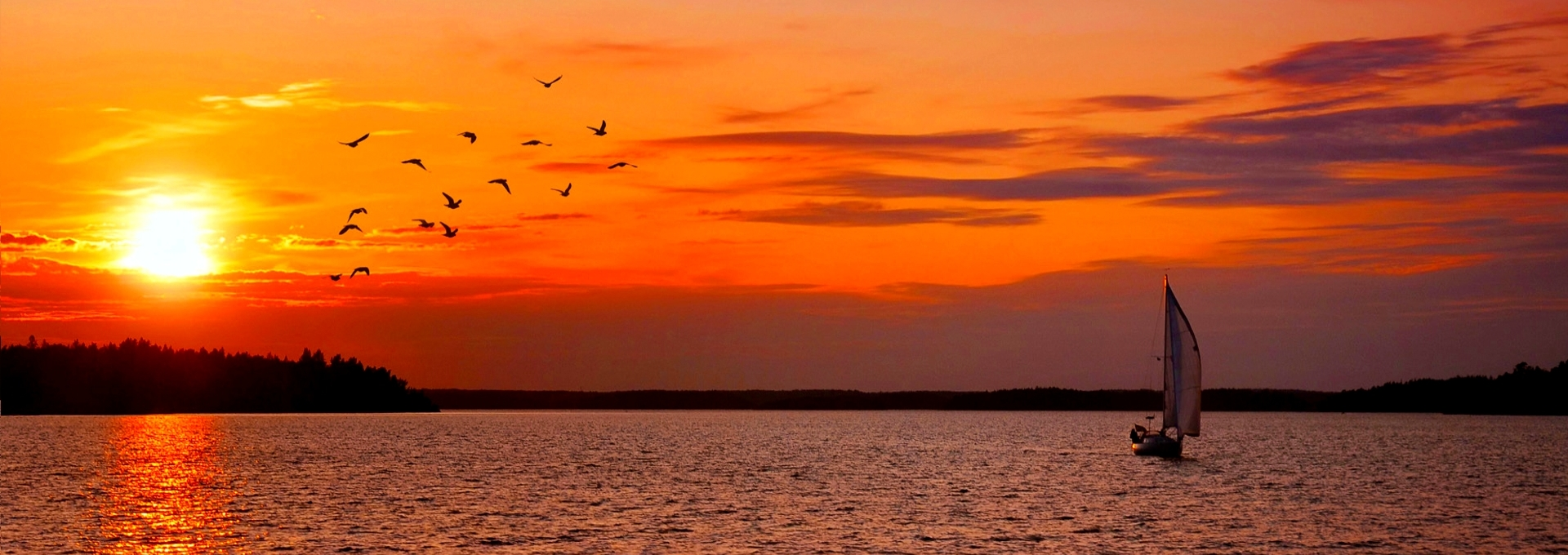Sailboat at sunset with birds, Sweden